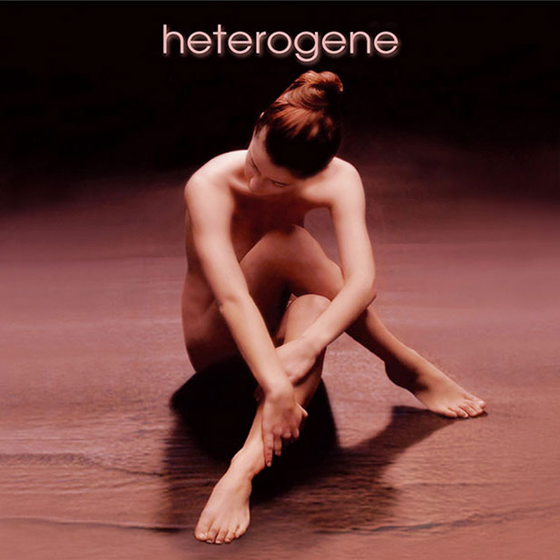 Heterogene project